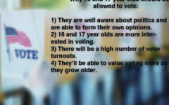 Should your vote be able to count?