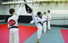 Taekwondo student kicks his way to states