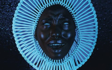 Awaken, My Love! review