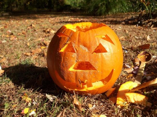 Pumpkins have more uses than just carving out a spooky Halloween face.