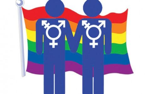 LGBT and Feminism Survey