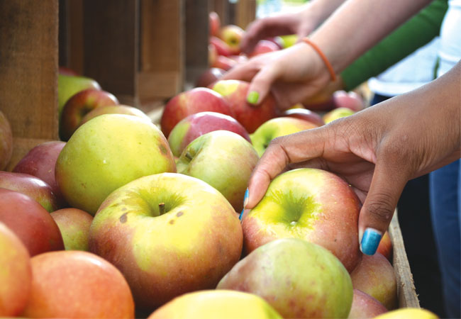 People picked what apples they wanted to buy.
