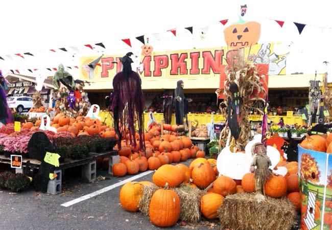 Spook-tacular fall outings