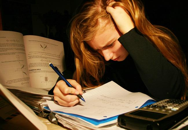 write legal opinion essay grade 3