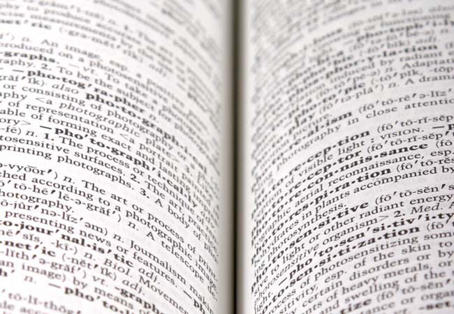 Use a dictionary to look for new words.