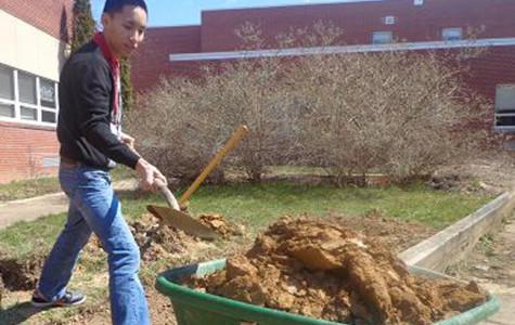 Garden work starts again
