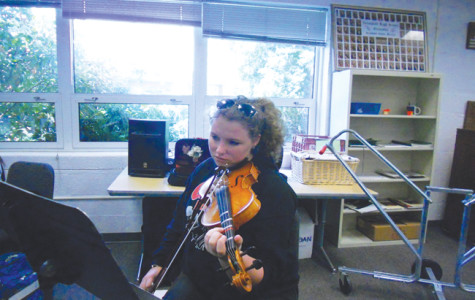 Orchestra holds annual auditions