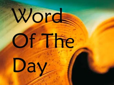 Word of the Day: Cynosure