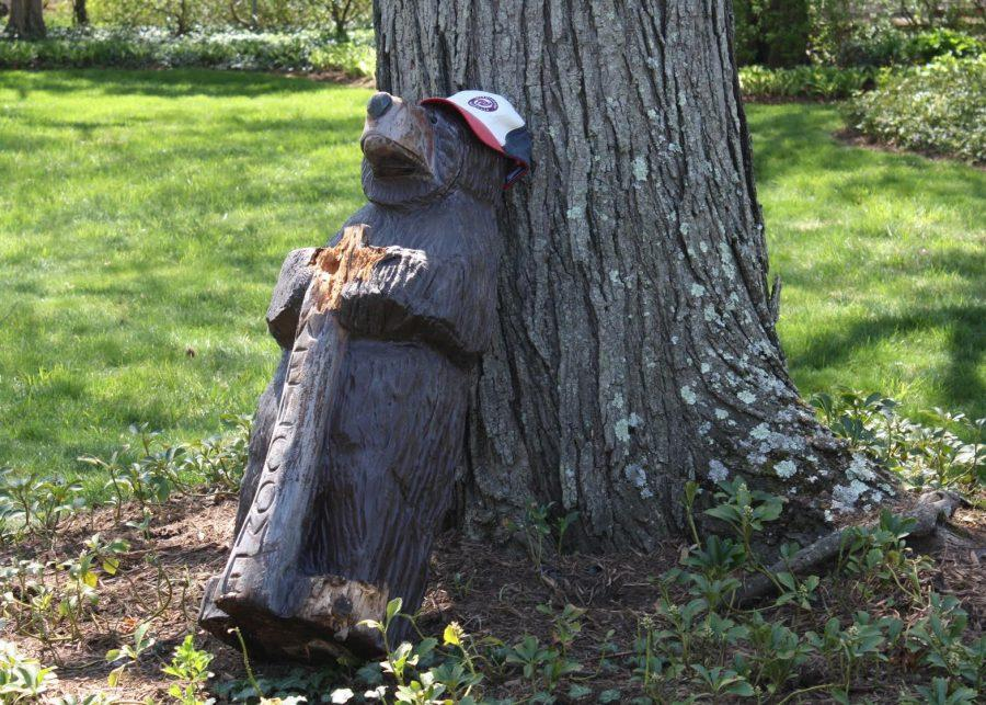 Bartholomew leaning against a tree after being knocked down.