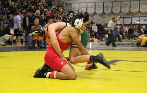 Wrestler hits huge milestone in career