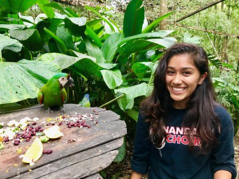 Having decided to take a break for the next school year, 2017 AHS graduate Kimberly Romero travels alone to Yanachocha, Ecuador to help aid wild life recovery.