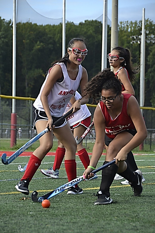 Freshman+Elizabeth+Ortiz+steals+the+ball+and+takes+it+down+the+field.+%22Field+hockey+is+a+great+way+to+stay+active+and+have+fun+at+the+same+time%2C%22+Ortiz+said.+%22In+practice%2C+we%27re+like+a+big+family%2C+but+also+it%27s+important+to+focus+on+getting+better+by+working+on+our+stick+skills+and+improve+any+way+we+can..%22