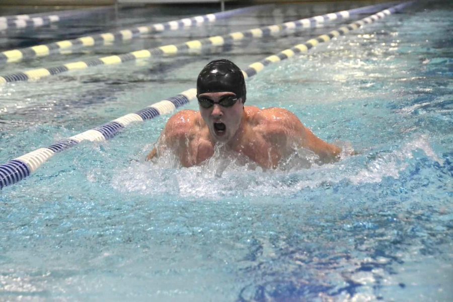Senior Ian Marburger swims the 100  yard butterfly at Lee District Rec Center in a tri-meet against Chantilly High School and Edison High School.