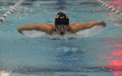 Swimming finishes off season at regionals