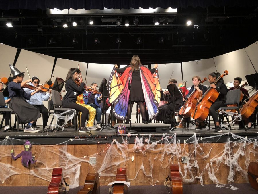 Orchestra impresses at their first concert