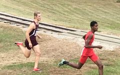 Cross country finishes season at states