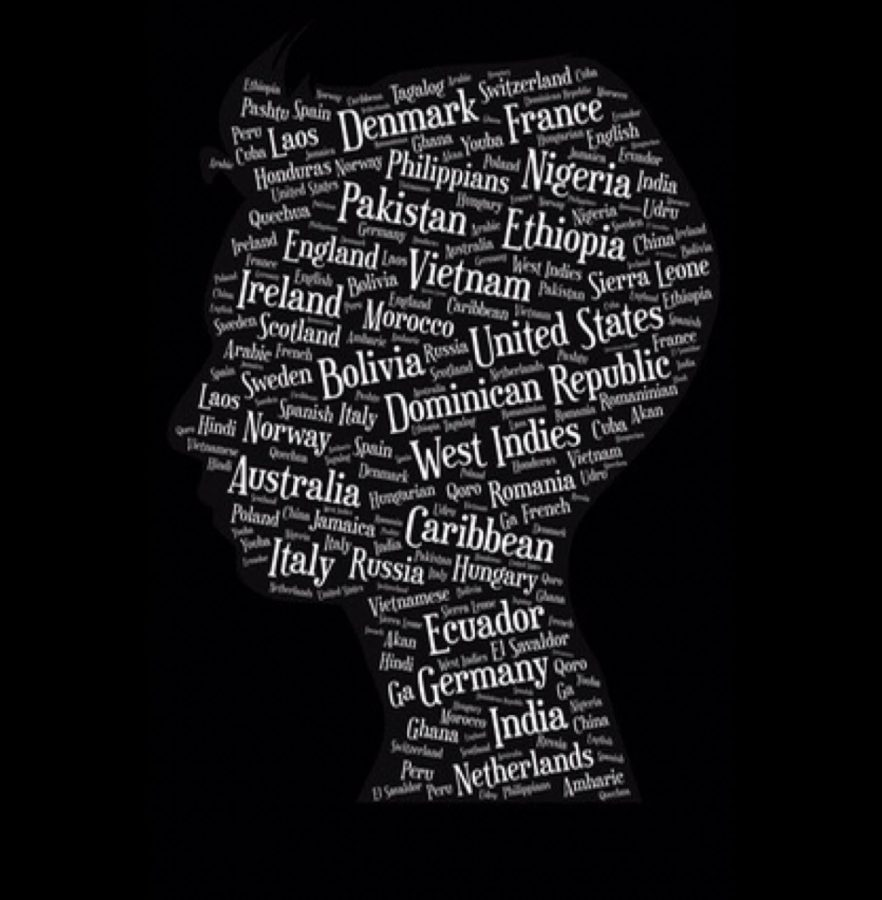 Different countries that represent the immigrants involved with the show form a silhouette of Anon's face (the main character of the play).