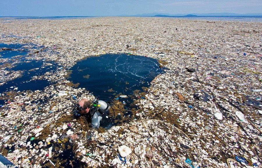 Pacific plastic problem persists