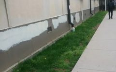 AHS building vandalized overnight
