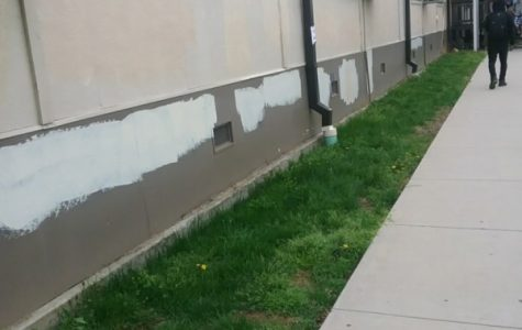 AHS building vandalized overnight