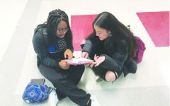 Seniors tackle first IB exam of the year