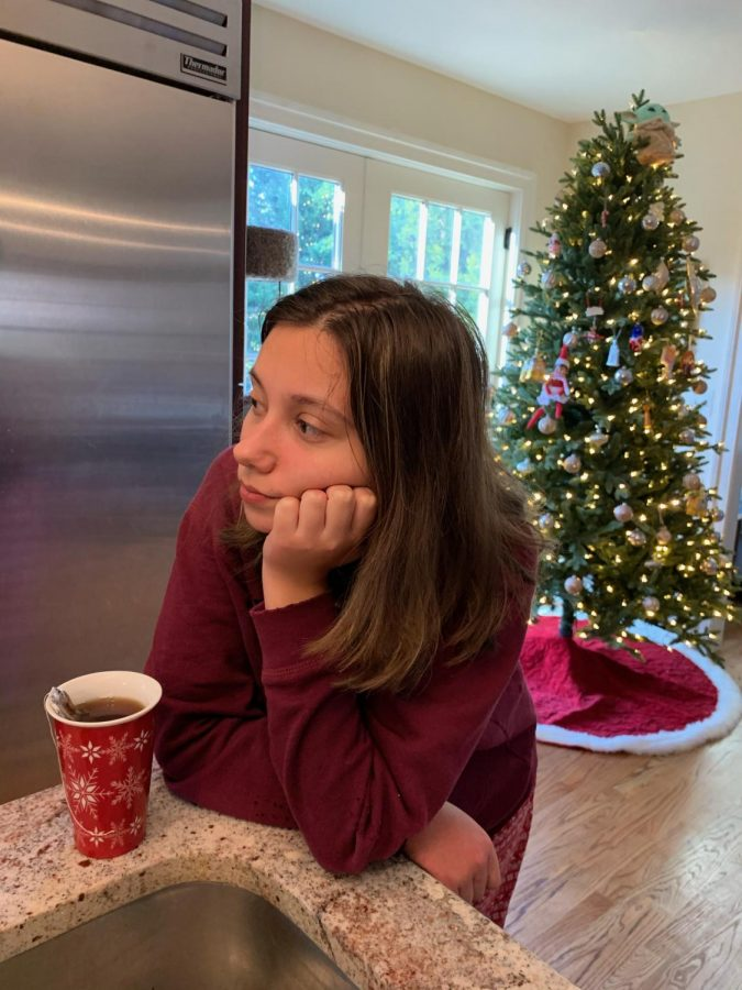 Although senior Sophia Baraban would ordinarily be with family in Indiana during the holiday season, her family is staying at home this year in fear of inadvertently spreading Covid-19.