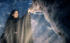 New Netflix show, Shadow and Bone, impresses